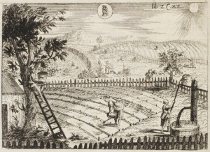 Georgica Curiosa 1682 - Noble Land + Country Life k