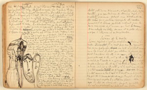 Proust's notebook